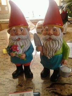 I think I want to have a creepy obsession for gnomes. I met a freaky gnome crazy lady in line at Walmart and she really inspired me.