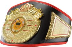 WINGS OF PREY GOLDEN NUGGET TITLE BELT boxing muay thai kickboxing winners award #TITLEBoxing
