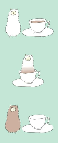 a combination between lama and tea = <3