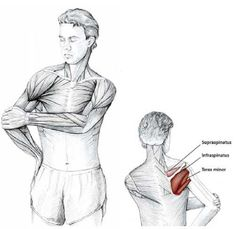 Easy Stretches to Release Tension in the Neck & Shoulders Shoulder Stretching Exercises, Neck And Shoulder Stretches, Neck Exercises, Easy Stretches, Neck And Shoulder Pain, Scoliosis Exercises, Workout Exercises, Fitness Exercises, Neck Pain