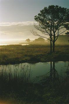 Chincoteague National Wildlife Refuge - Assateague Island