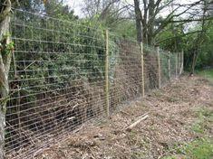 deer fences for garden | deer