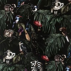 Amazonia Dark Velvet