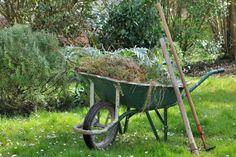 Green Recycling, Recycling Bins, Garden Pests, Garden Tools, Construction Waste, Yard Waste, Kitchen Waste, Rain Garden, Dry Leaf