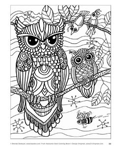 Awesome Owls Coloring Book by Fox Chapel Publishing - issuu (see my owl board for more RoSaLiE)