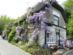 Isle of Wight tea room, Isle of Wight, England Isle Of Wight, English Countryside, British Isles, Places To See, Beautiful Places, Around The Worlds, English Cottages, English Village, Britain