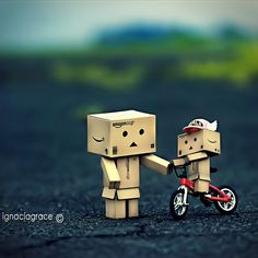 danbo | have you ever come across danbo here there everywhere danbo danbo i ...