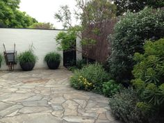 A serene courtyard at Cameron Paterson's Toorak garden
