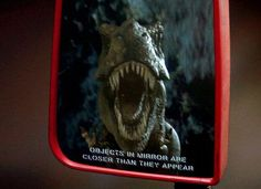 I think the picture alone on this describes why its a great shot with a mirror.  Jurassic park the jeep scene.
