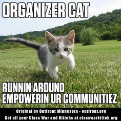 Are you an organizer cat, or are you a lazy kitty? #ClassWarKitteh