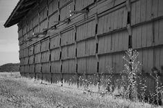 Lilleskov brickworks - drying shed exterior - Tørrelade Tommerup Denmark Wooden Architecture, Facade Architecture, Wooden Facade, Timber Roof, Cooling Tower, Farm Shop, Brickwork, Fabric Shades, Building Design