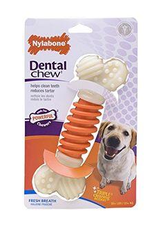 Nylabone Dental Chew Large Bacon flavored Pro Action Bone Dog Chew Toy Nylabone http://www.amazon.com/dp/B0027J5RZA/ref=cm_sw_r_pi_dp_YYyOub1VTV4GG