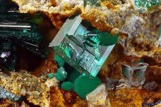 Ktenasite, La Veneziana Mine, Monte Trisa, Val Mercanti, Torrebelvicino, Vicenza, Veneto, Italy. Fov 0.54 mm. Copyright Matteo Chinellato