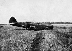 P-40 crash near Darwin Australia