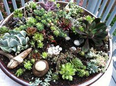 Picture Of Succulent Dish Garden For Planning Miniature Garden Design .