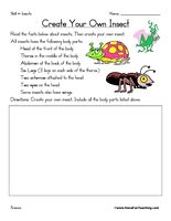 Create Your Own Insect Worksheet: Students must create their own insect using the different insect body parts: Head, Thorax, Abdomen, Six Legs, Two antennae, Two eyes, and some insects also have wings. Information: Insect Worksheet. Insects Worksheet. Draw Your Own Insect.