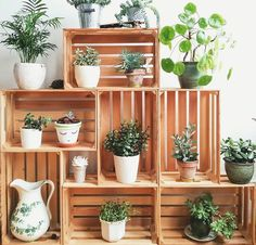 Crates in my living room corner. Crates as plant stands. Succulents and other indoor plants. You are in the right place about Suculentas Interior, Decoration Plante, Crate Furniture, Furniture Ideas, Furniture Online, Corner Furniture, Pool Furniture, Wooden Furniture, Office Furniture
