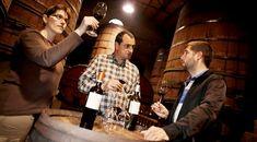 Cómo determinar el valor de una botella: 10 claves de inversión en vinos https://www.vinetur.com/2014071716192/como-determinar-el-valor-de-una-botella-10-claves-de-inversion-en-vinos.html