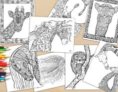 Adult Coloring Book, 18  Colouring Book Pages For Adults To Download And Print, Animal Adult Colouring Book