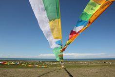 今回の旅のメインである青海湖に向かいます。雲一つない真っ青な空の下、緑豊かな大草原が湖畔に広がる青海湖の風景は本当に素晴らしいものでした。また、チベット色豊かな寺院やチョルテン、タルチョーもこの青海湖畔の周辺に点在し、思いのほかチベット風情を味わうことができました。<br /><br />*******************************************<br /> 8/11(土) 関空→上海→西寧<br /> 8/12(日) 西寧→同仁六月会(蘇乎日村)<br /> 8/13(月) 同仁→坎布拉自然公園→黄河→龍羊峡→共和<br />★8/14(火) 共和→茶カ塩湖→青海湖→西海<br /> 8/15(水) 西海→沙島→門源→西寧<br /> 8/16(木) 西寧→上海→関空 <br />