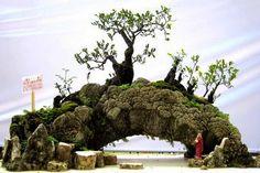 Incríveis Paisagens em Miniatura | Curiosidades do Japão