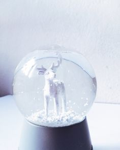 Kula śniegowa, snowball, white, renifer, zima