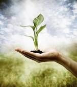 The ultimate bond with nature--to place things in the soil!