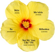 Hawaiian Culture :: lots to read