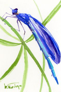 """Blue Dragonfly one of a kind original watercolor painting 9"""" X 6"""" by ORIGINALONLY on Etsy"""
