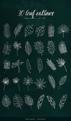 Tropical Leaves - 60 Illustrations by Amber & Ink on Creative Market - Tro . - Tropical Leaves – 60 Illustrations by Amber & Ink on Creative Market – Tropical Leaves – 60 I - Doodle Patterns, Zentangle Patterns, Leaf Patterns, Floral Patterns, Leaf Drawing, Floral Drawing, Drawing On Wall, Contour Drawing, Plant Drawing