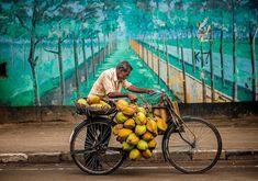 Keep hashtagging us at Pictures Credi Bike India, Varanasi, India Travel, Incredible India, Creative Photography, Sri Lanka, Creatures, The Incredibles, Animals