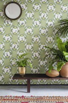 Ardmore Cameos by Cole & Son - Green - Wallpaper : Wallpaper Direct Tropical Wallpaper, Green Wallpaper, Amazing Wallpaper, Botanical Wallpaper, Print Wallpaper, Room Wallpaper, Leopard Print Background, Cole Son, Cole And Son Wallpaper