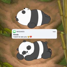 we bare bears Cute Panda Wallpaper, Cartoon Wallpaper Iphone, Bear Wallpaper, Cute Disney Wallpaper, Cute Wallpaper Backgrounds, We Bare Bears Wallpapers, Panda Wallpapers, Cute Cartoon Wallpapers, Ice Bear We Bare Bears