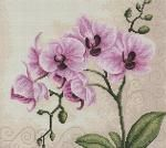 Pink Orchid Cross Stitch Kit