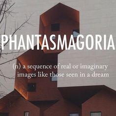 Phantasmagoria |fanˌtazməˈgôrēə| early 19th century origin (originally the name of a London exhibition (1802) of optical illusions produced chiefly by magic lantern): probably from French fantasmagorie, from fantasme 'phantasm' + a fanciful suffix.