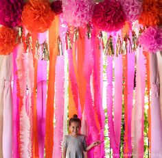 Pink Fringe Streamers ;  Photobooth  Backdrop