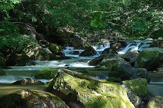 River Radika Republic Of Macedonia, Beautiful World, Natural Beauty, Waterfall, River, City, Nature, Outdoor, Outdoors