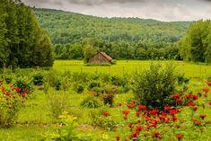 La Courgerie - Automne Lanaudière Vineyard, Mountains, Unique, Nature, Travel, Outdoor, Places, Fall Season, Outdoors