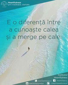 E o diferență între a cunoaște calea și a merge pe cale. #cunoaste_cu_inima #meditatia_heartfulness #hfnro Meditatia Heartfulness Romania Cale, Quotes, Quotations, Quote, Shut Up Quotes