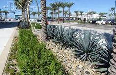 North Embarcadero Vision Plan | Decorative Stone Solutions