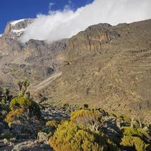 Read about climbing Mount Kilimanjaro, the highest mountain in Africa. Includes route overview, packing tips and how to deal with altitude sickness. Altitude Sickness, Mount Kilimanjaro, Campsite, Tanzania, Trekking, Adventure Travel, Climbing, How To Find Out, Places To Visit