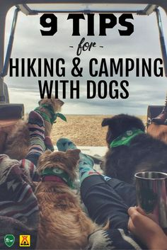 Tips from Camping with Dogs