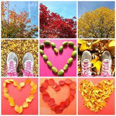[Nieuw blog] | Inspiratie: zo mooi en kleurrijk is de herfst. | http://marloesvanzoelen.nl/inspiratie-zo-mooi-en-kleurrijk-is-de-herfst/