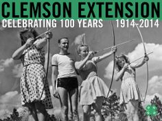 Archery at Camp Long, South Carolina State 4-H camp (1942).Image from Clemson University Special Collections. #ClemsonExt100