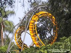 Python (Busch Gardens Tampa), the first looping coaster I ever rode. Busch Gardens Tampa, Roller Coasters, Tampa Florida, Amusement Parks, Python, Madness, Nostalgia, United States, Steel