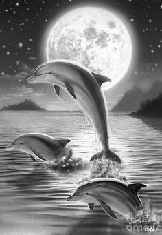 Dolphins in the Moonlight coloring for adults, kleuren voor volwassenen, Kleuren voor volwassenen Färbung für Erwachsene, coloriage pour adultes, colorare per adulti, para colorear para adultos, раскраски для взрослых, omalovánky pro dospělé, colorir para adultos, färgsätta för vuxna, farve for voksne, väritys aikuiset difficult schwierig difficile difficile difícil трудно  těžké  difícil vårt detailed detaillierte détaillée dettagliate detallados подробную  detailní detalhada detaljerad…