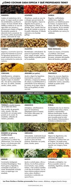 Cooking with spices and aromatic herbs in Catalonia Easy Cooking, Cooking Tips, Cooking Recipes, Healthy Recipes, Healthy Food, Aromatic Herbs, Food Facts, Drying Herbs, Soul Food