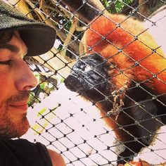 Ian Somerhalder - 03/05/14 - Lemur love on Necker Island.I'm in love... My new girlfriend... http://instagram.com/p/niySMgKJ1C/ - Twitter & Instagram Pictures