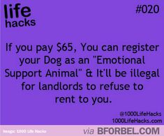 Landlords Will Have No Excuse This Time…