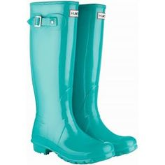 My new Hunter Wellies - the Ugg of rain boots- nec. for any commuter who has to puddle jump around Manhattan.